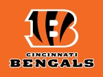 Cincinnati Bengals (AFC North)