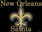 New Orleans Saints (NFC South)