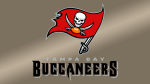 Tampa Bay Buccaneers (NFC South)